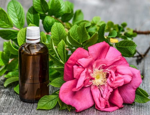 Top 11 Essential Oils for Hair Growth: Herbs that Heal