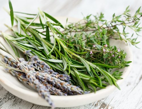 The Beauty Benefits and Uses Rosemary Essential Oil